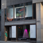Une exposition dans les vitrines des boutiques du Centre-Ville jusqu'au 17 septembre 2017