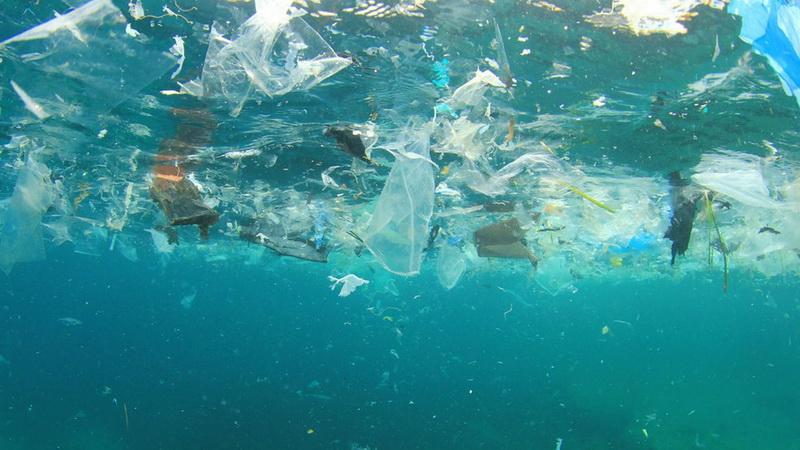 Pollution des eaux : Nouveau service de détection des sources de  contamination – L'initiative